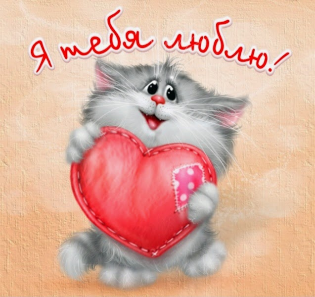 Ты мой котенок любимый картинки прикольные, открытка