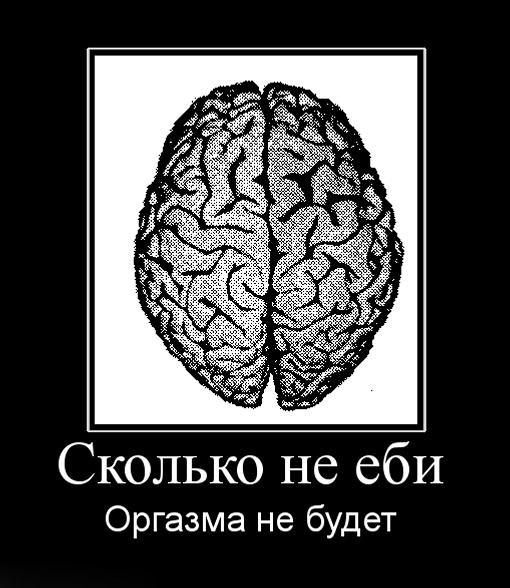 ира не еби мне мозги