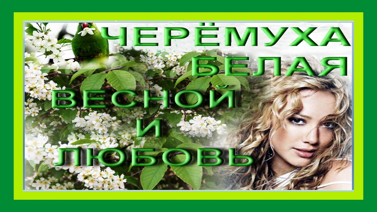 Одесса Скачать 3 музыку бесплатно и слушать онлайн песни